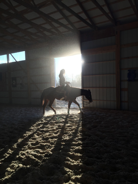 indoor arena sunburst